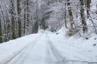 Sněžení komplikuje dopravu hlavně v horských oblastech.