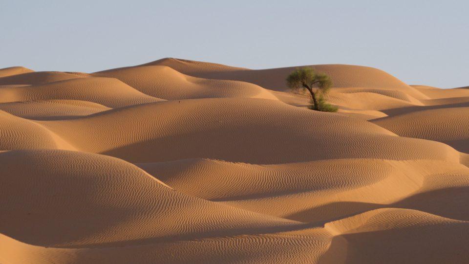 Duny a Sahara.