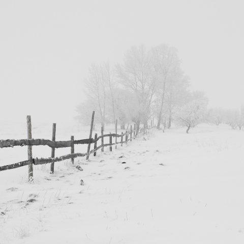 Zima a mráz (ilustrační foto)