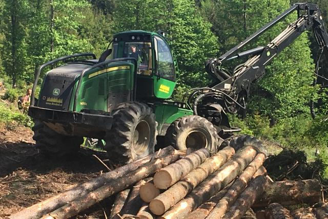 Lesy na Rožnovsku ničí sucho a kůrovec   foto: Libor Netopil