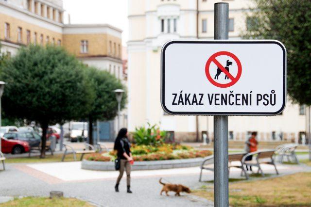 Zákaz venčení psů - cedulka na Smetanově náměstí v Pardubicích