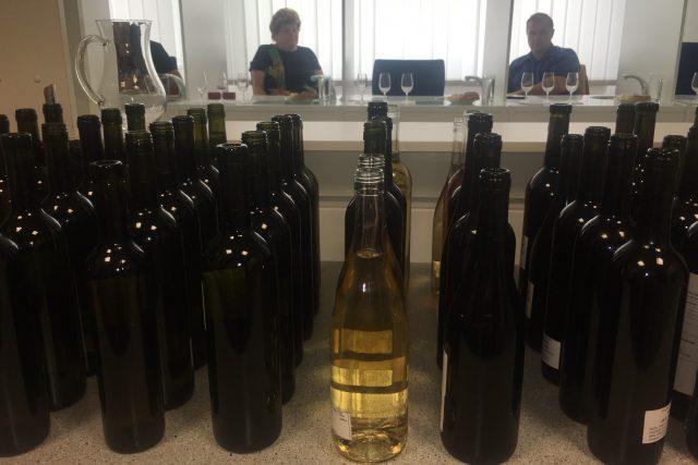 Na SZPI zasedají 150 krát do roka degustátoři a zatřiďují vína.