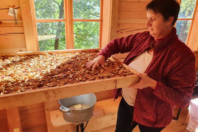 Sušírna ovoce a bylin, Vlachovice na Zlínsku