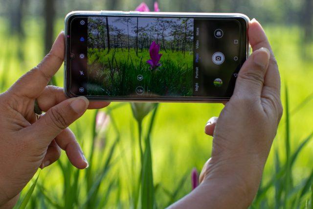 Focení přírody mobilem (ilustrační obrázek)