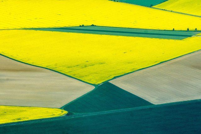 Podle expertů prochází Česko nejhorším obdobím sucha za 500 let